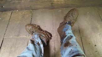 mudfoots