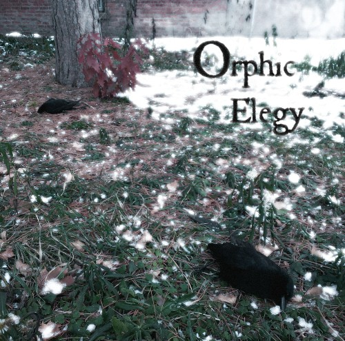 orpegcover